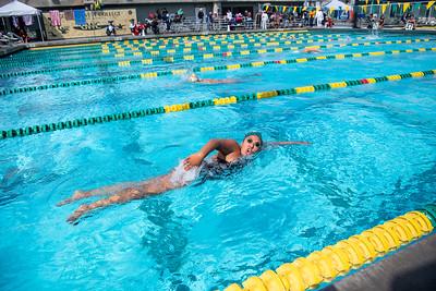 Swim-Meet-2019-03-22-6564