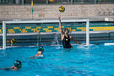 Water-Polo-W-2019-09-18-1274