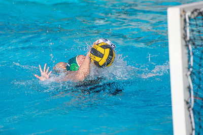 Water-Polo-W-2019-09-18-1332