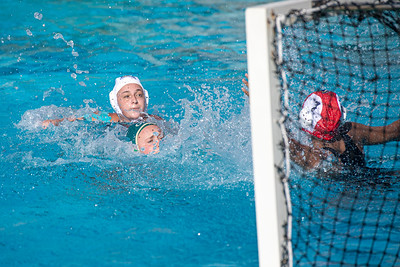Water-Polo-W-2019-09-18-1338