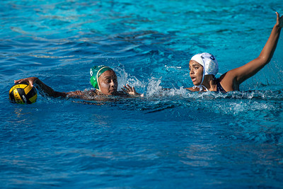 Water-Polo-W-2019-09-18-1288
