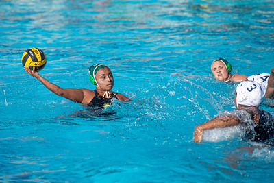 Water-Polo-W-2019-09-18-1351