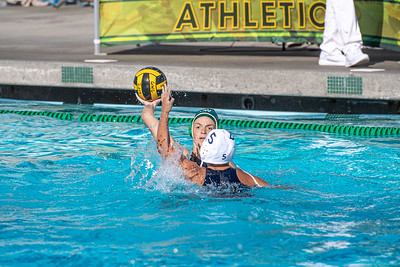 Water-Polo-W-2019-09-18-1279