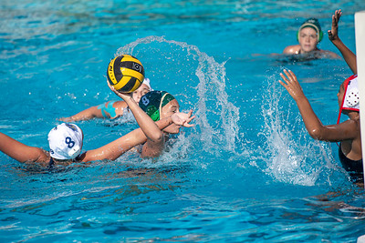 Water-Polo-W-2019-09-18-1314