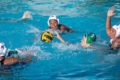 Water-Polo-W-2019-09-18-1346