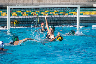 Water-Polo-W-2019-09-18-1270