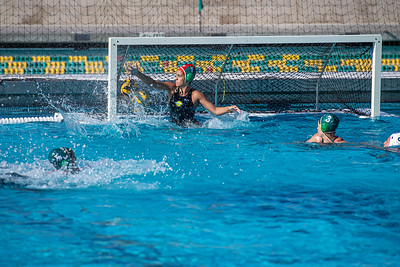 Water-Polo-W-2019-09-18-1371
