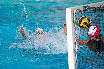 Water-Polo-W-2019-09-18-1336