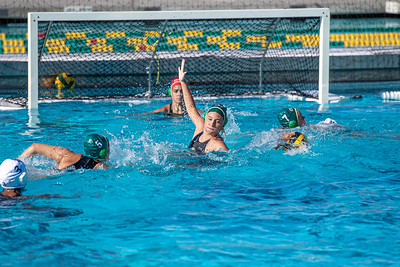 Water-Polo-W-2019-09-18-1272