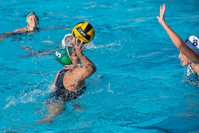 Water-Polo-W-2019-09-18-1364