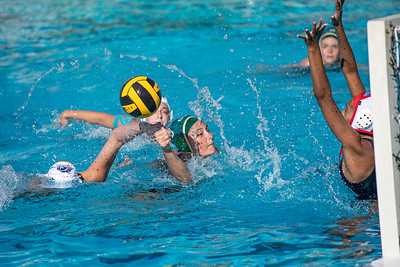 Water-Polo-W-2019-09-18-1316