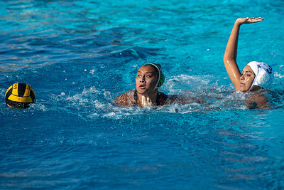 Water-Polo-W-2019-09-18-1283