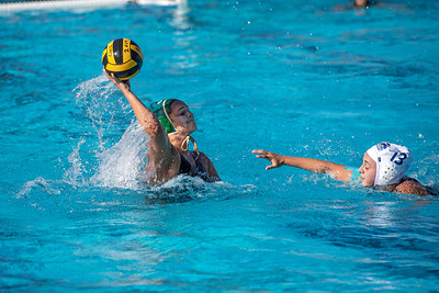 Water-Polo-W-2019-09-18-1345