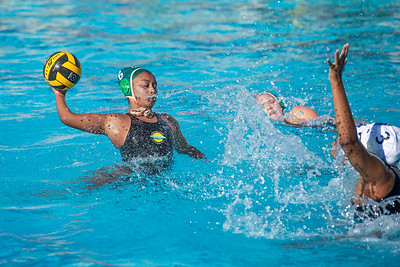 Water-Polo-W-2019-09-18-1352