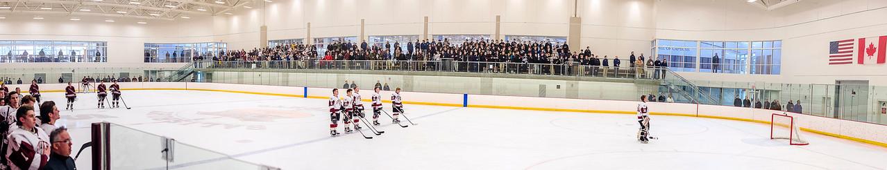 2015-2016 Hockey Play-Offs