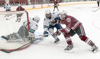 2015-2016 Varsity Hockey