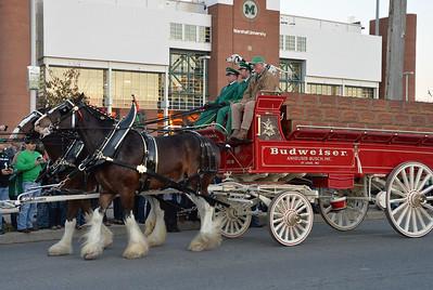 horses4544