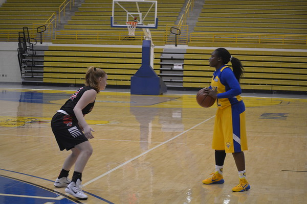 Womens Basketball Game 11-18-14