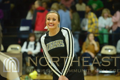 2017-02-16 CHEER Sophomore Cheerleading Recognition