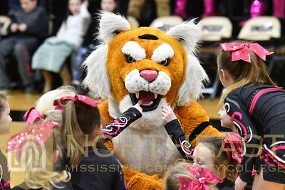 2018-02-08 CHEER Spirit the Tiger with Tumblers