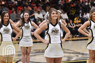 2019-02-04 CHEER Cheerleading Performance at ICC Game