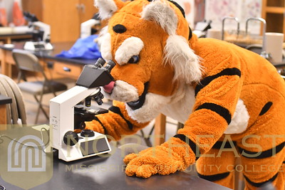 2019-03-08 CHEER Tiger in Science Lab