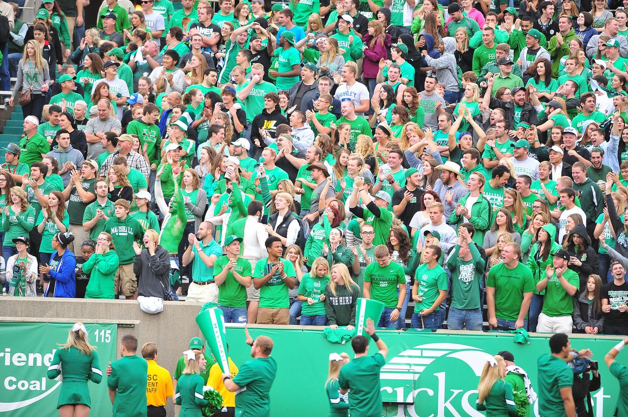 crowd3913