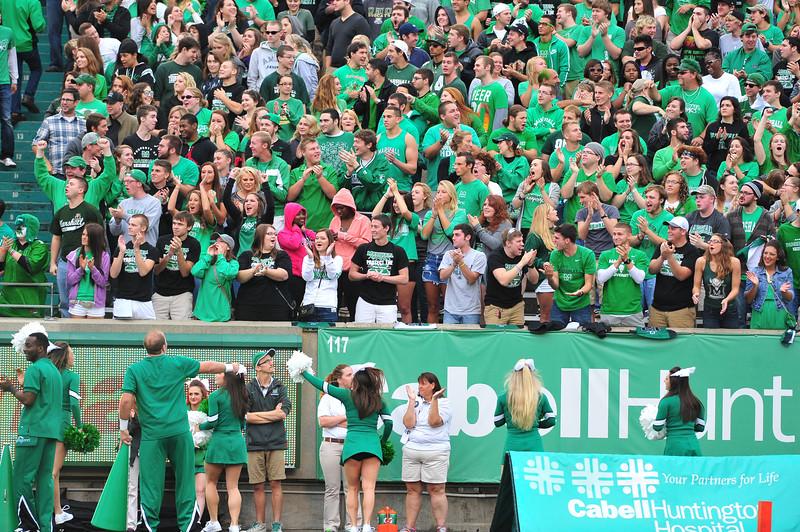 crowd3911