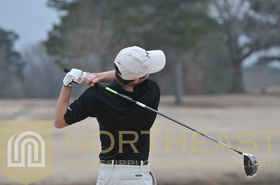 2014-02-19 GLF Golf Team Action Shots