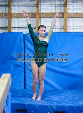 Gymnastics 2019