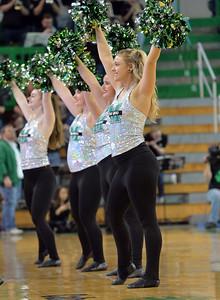 dance team4134