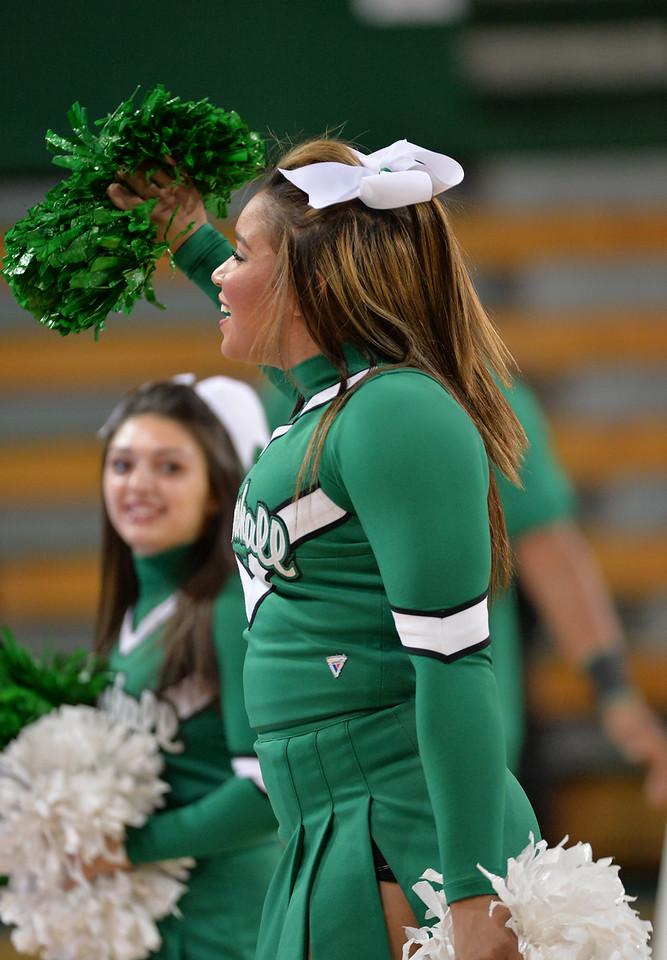 cheerleaders4010