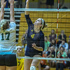 WomensVolleyball_9-10-16 (5 of 127)