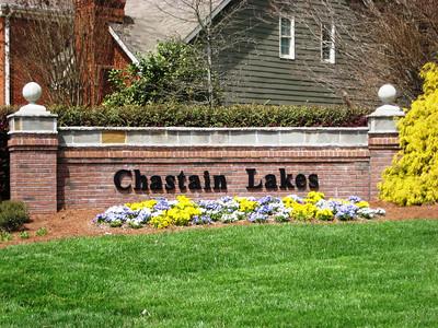 Chastain Lakes Neighborhood Georgia (2)