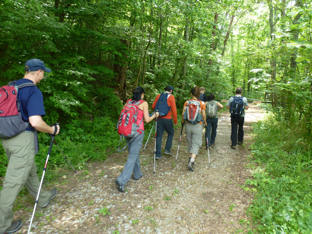 Pocket Trail and Shirley Miller Trail (Atlanta Outdoor Club)