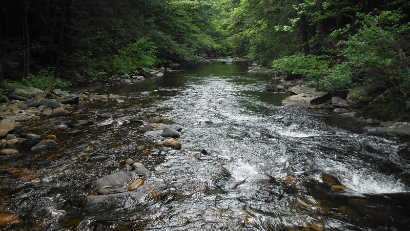 Conasauga River (Atlanta Outdoor Club)