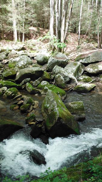 Conasauga River (Atlanta Outdoor Club)
