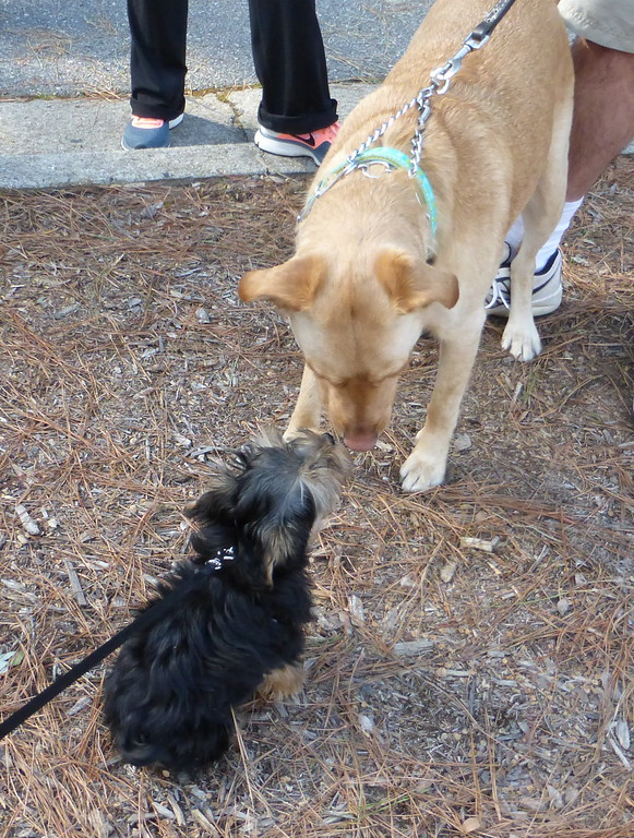Parker Meeting Bailey