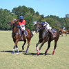 Polo in the Pines - October 8, 2016 263