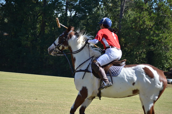 Polo in the Pines - October 8, 2016 168