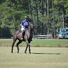 Polo in the Pines - October 8, 2016 093