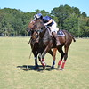 Polo in the Pines - October 8, 2016 264
