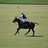 Polo in the Pines - October 8, 2016 324