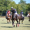 Polo in the Pines - October 8, 2016 261