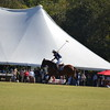 Polo in the Pines - October 8, 2016 151