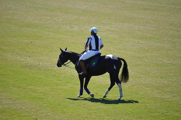 Polo in the Pines - October 8, 2016 312