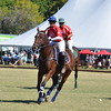 Polo in the Pines - October 8, 2016 259