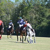 Polo in the Pines - October 8, 2016 204