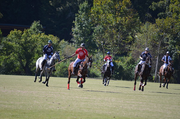 Polo in the Pines - October 8, 2016 121