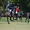 Polo in the Pines - October 8, 2016 098